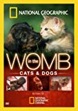 In the Womb: Cats & Dogs [DVD] [2009] [Region 1] [US Import] [NTSC]