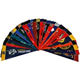 Rico Nhl Mini Pennant Set (All 30 Teams)