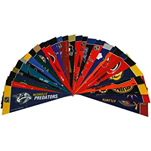 NHL Hockey Complete 30 Team 4x9 Mini Pennant Set