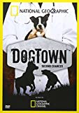 Dog Town:Second Chances