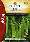 Burpee 69642 Asian - Pea, Snow Oregon Sugar Pod Seed Packet