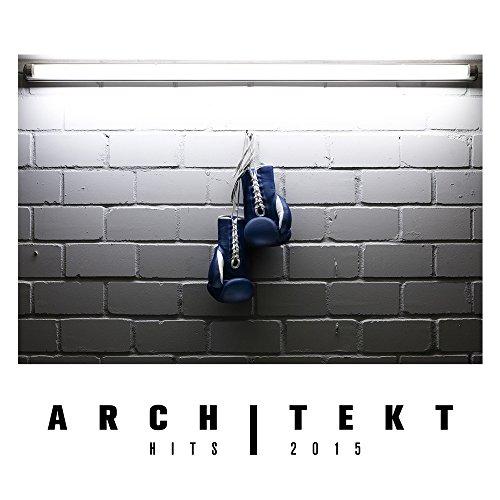 Architekt HITS 2015