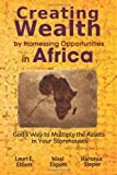 img - for By Lauri E. Elliott Creating Wealth by Harnessing Opportunities in Africa: God's Way to Multiply the Assets in Your Stor [Paperback] book / textbook / text book