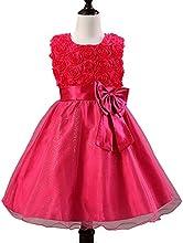 Girl39s Flower Girl Wedding Bridesmaid Party Dress