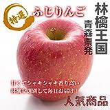 【シャキッと甘い太陽の恵!】 青森県産 秀品 ふじ りんご 10kg