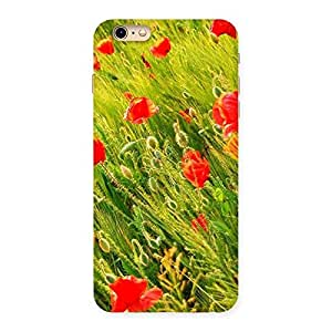 Delighted Beauty Flowers Farm Back Case Cover for iPhone 6 Plus 6S Plus