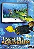 Tropical Fish Aquarium