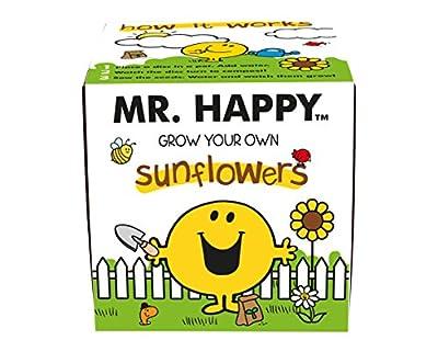 Mr Men Mr Happy Sunflowers Grow Kit