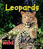 Leopards (In the Wild)