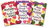 A Heartsongs Treasury - 3 Copy Slipcase (1401300375) by Stepanek, Mattie J.T.