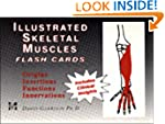 Illustrated Skeletal Muscle Flash Cards