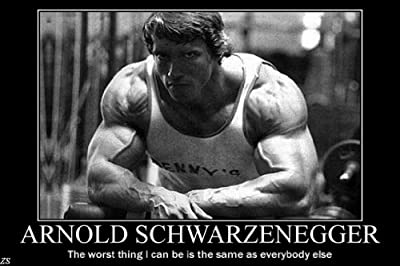 Arnold Schwarzenegge Body Building Nice Silk Fabric Cloth Wall Poster Print (36x24inch 20x13inch)