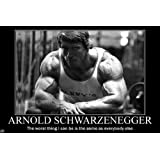 Arnold Schwarzenegge Body Building Nice Silk Fabric Cloth Wall Poster Print (36x24inch)