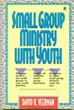 Small Group Ministry With Youth (Sonpower Youth Sources) (0896939197) by Veerman, David R.
