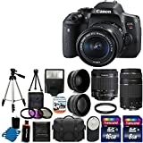 Canon EOS Rebel T6i 24.2MP Digital SLR Camera USA warranty with Canon EF-S 18-55mm f/3.5-5.6 IS STM [Image Stabilizer] Zoom Lens & EF 75-300mm f/4-5.6 III Telephoto Zoom Lens + 58mm 2x Professional Lens +High Definition 58mm Wide Angle Lens + Auto Power Flash + UV Filter Kit with 24GB Complete Deluxe Accessory Bundle
