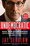 img - for Undemocratic: Rogue, Reckless and Renegade: How the Government is Stealing Democracy One Agency at a Time book / textbook / text book