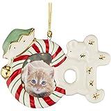 Lenox Cat Frame Ornament/Magnet