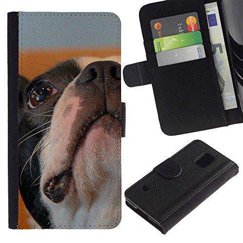 omega-case-samsung-galaxy-s5-v-sm-g900-boston-bulldog-terrier-french-dog-bull-slim-pu-leather-wallet