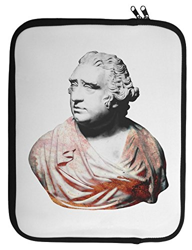 bust-of-charles-james-fox-laptop-case-13-14-15-14