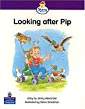Looking After Pip: Storybook 45 (Literacy Land - Story Street)