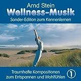 """Wellness-Musik Sonderedition Vol.1von """"Arnd Stein"""""""