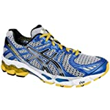 Asics Herren Laufschuhe GEL-Kayano 17