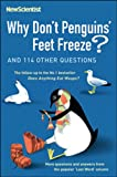 New Scientist Magazine Staff Why Dont Penguins Feet Freeze