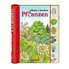 Verkleinerte Titelseite von Entdecken & Bestimmen: Pflanzen