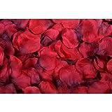 1000 Red Large Premium Silk Rose Petals Christmas, Wedding Flowers, Confetti