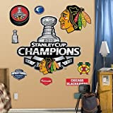 (41x44) Chicago Blackhawks 2010 Champions Logo Wall Decal