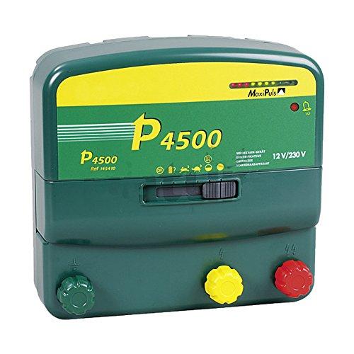 P4500, Batterien Multifunktions-Gerät, 230V/12V mit verzinkter Tragebox - 145420