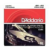 D\'Addario EJ61 Jeu de cordes en nickel pour Banjo 5 cordes 10-23 Medium