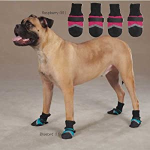 Guardian Gear ZW0245 04 16 Brite Dog Boot for Dogs, Small, Bluebird