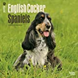 English Cocker Spaniels 2015 Calendar