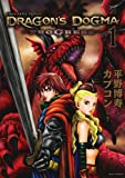DRAGON'S DOGMA PROGRESS / カプコン のシリーズ情報を見る