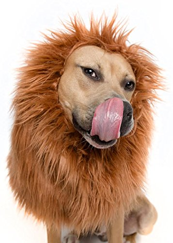 Lion Mane Costume and Big Dog Lion Mane Wig - Large Dog Costumes by Pet Krewe