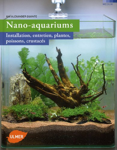nano-aquariums-installation-entretien-plantes-poissons-crustaces