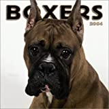 Boxers 2004 Calendar
