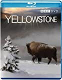 Yellowstone [Blu-ray] [Region Free]