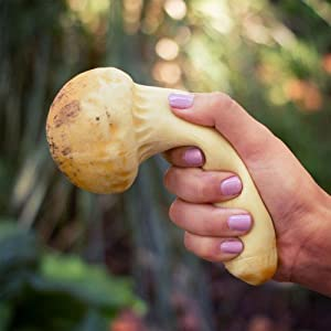 Stress Mushroom - Matsutake
