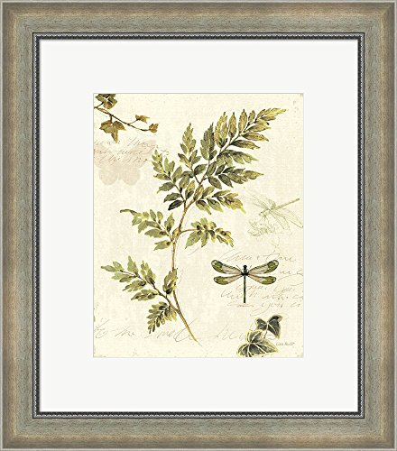 ivies-and-ferns-iii-by-lisa-audit-framed-art-print-wall-picture-silver-scoop-frame-with-hanging-clea