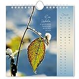 Image de Lichtblicke 2017: Postkartenkalender