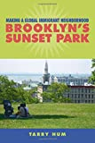 Making a Global Immigrant Neighborhood: Brooklyn's Sunset Park (Asian American History & Cultu)