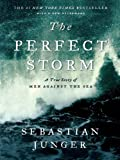 Image of The Perfect Storm