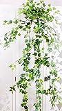 MedianField 【 観葉植物 アイビー 3本 】 壁掛け インテリア アンティーク 雑貨 造花 人工 フェイク 壁掛 グリーン 緑 植物 吊り (3本)