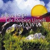 Praise! Cor Meibion Llanelli