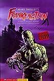 Mary Wollstonecraft Shelley Frankenstein (Graphic Revolve) (Graphic Fiction: Graphic Revolve)