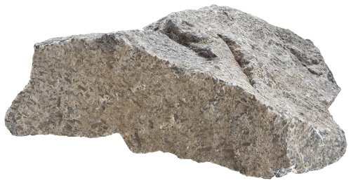 American Educational Medium Grained Hornblende Diorite Igneous Rock, 1Kg