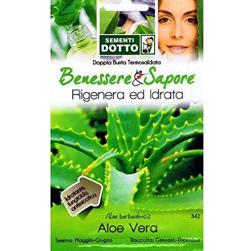 vivai-le-georgiche-aloe-vera-aloe-barbadensis-semente