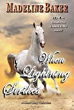 When Lightning Strikes: A Short Story Collection